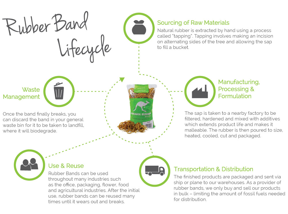 Rubber Band Life Cycle
